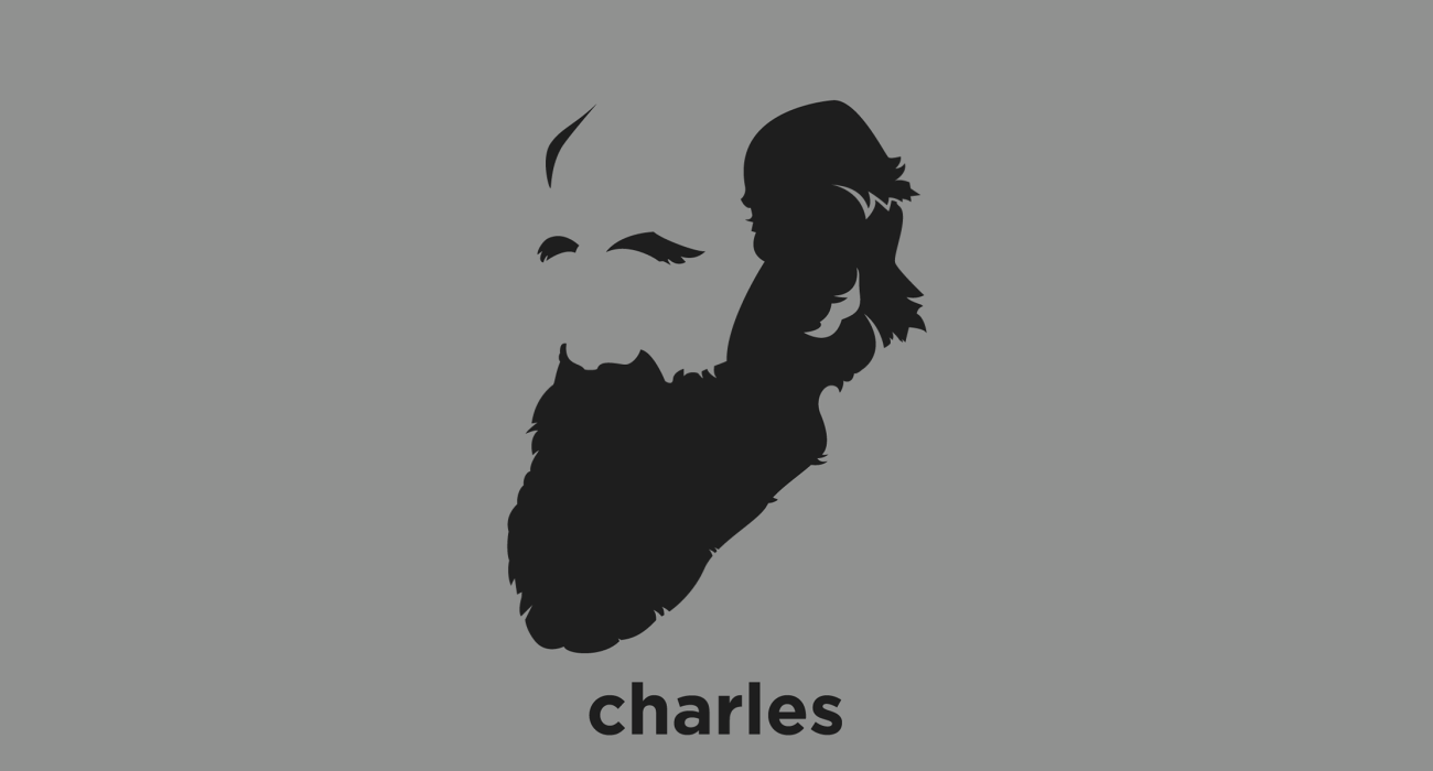 A t-shirt with a minimalist hair based illustration of Charles Darwin: naturalist and geologist, best known for his contributions to evolutionary theory and his seminal work On the Origin of the Species