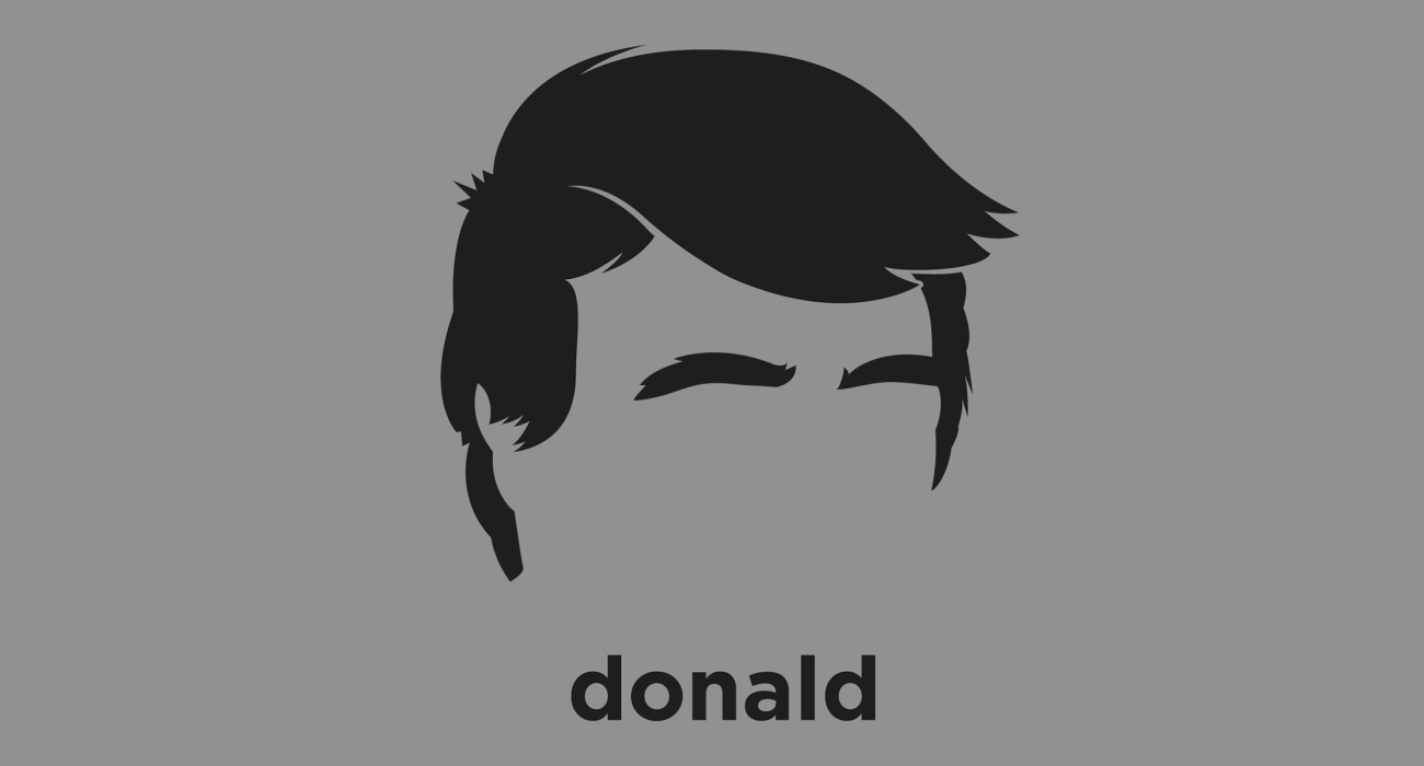 A t-shirt with a minimalist hair based illustration of Donald Trump: American business magnate, television personality, Republican presidential nominee, and total sh*t head