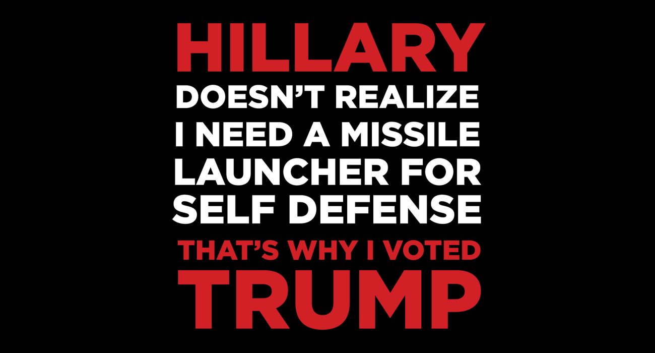 Hillary doesn't realize I need a rocket launcher to protect my family, that's why I'm voting tea party