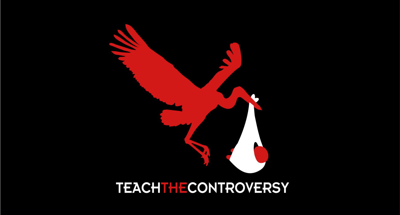 A religious parody t-shirt:  The stork birth hypothesis, a viable alternative to sperm/egg/uterus based theories? You decide!