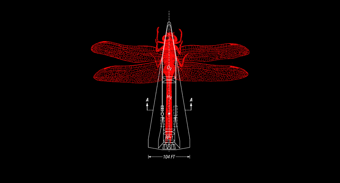 A dragonfly woodcut and a patent drawing of a rocket