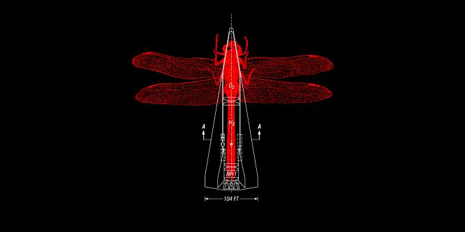 Graphic for dragonflyrocket
