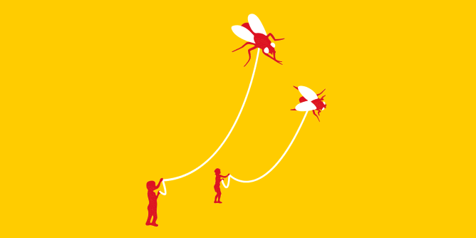 Graphic for flies