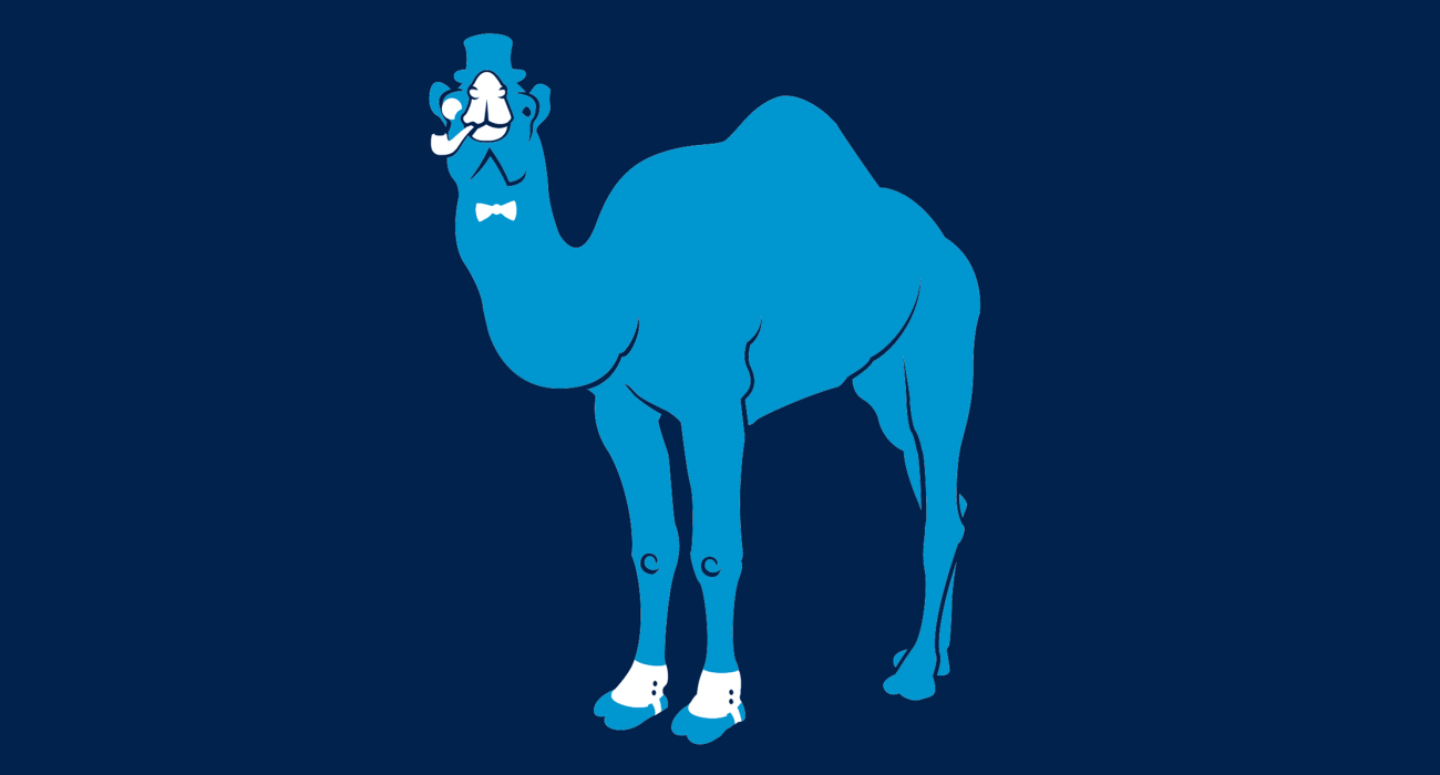 A fancy pants camel, dressed to the nines and ready for a night out on the town