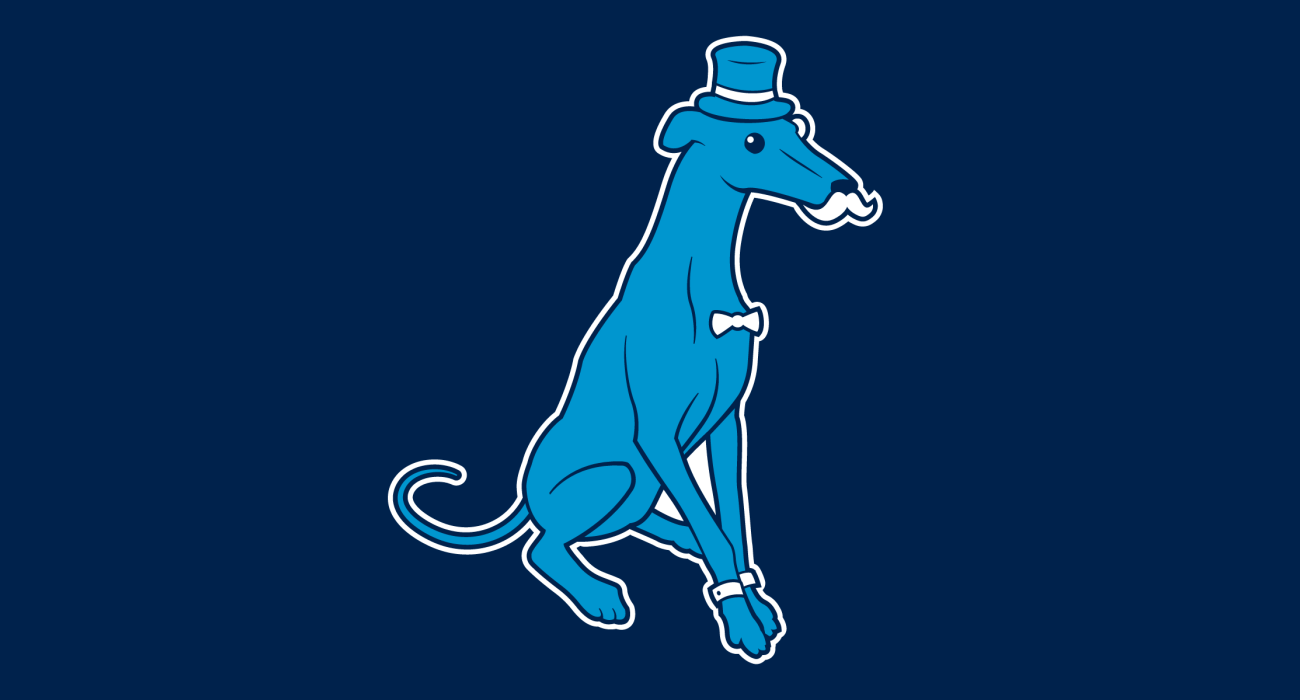 A classy lil' greyhound wearing a top hat and dressed to the nines, then slathered on a t-shirt