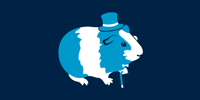 Graphic for sir-guineapig