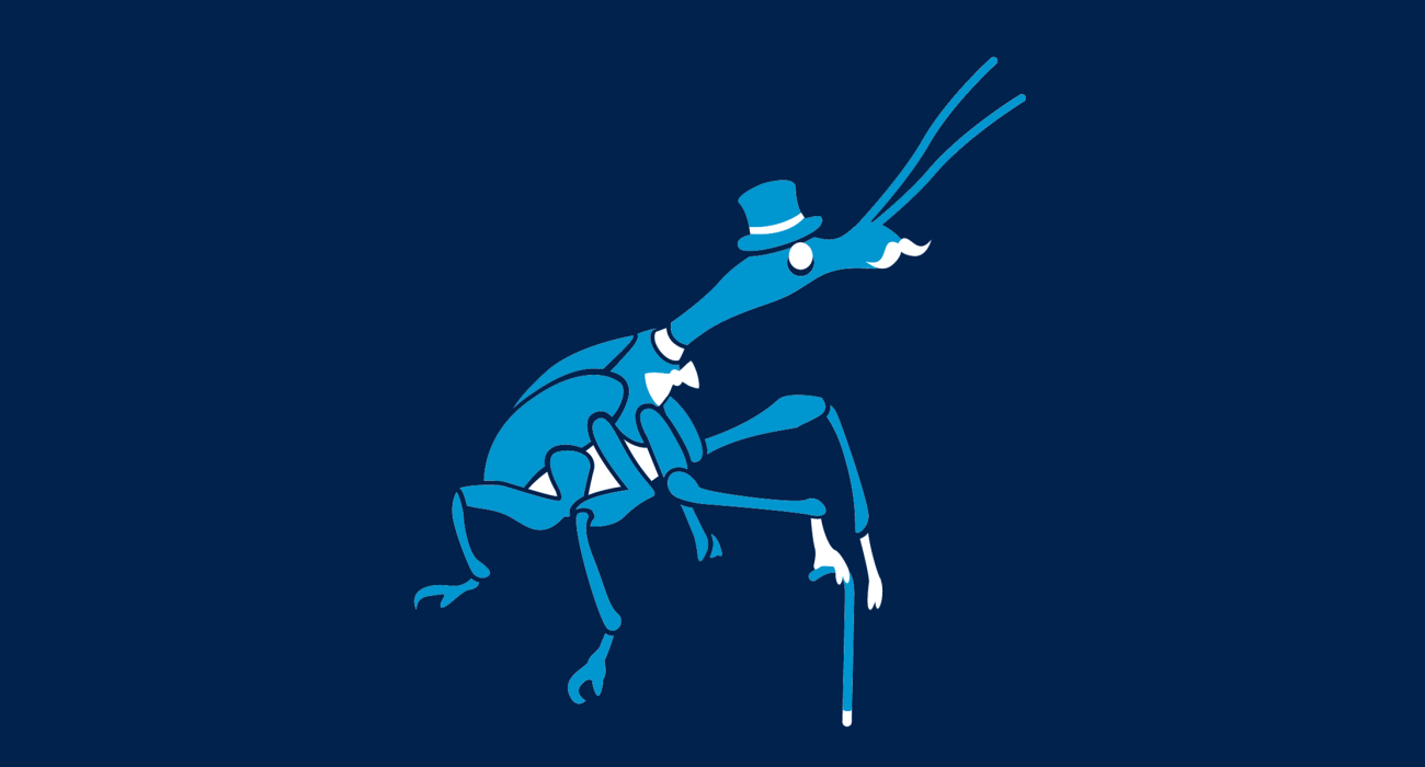 A fancy pants weevil, dressed to the nines and ready for a night out on the town
