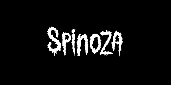 Graphic for spinoza